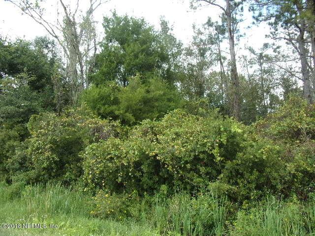 154 CRACKER SWAMP, EAST PALATKA, FLORIDA 32131, ,Vacant land,For sale,CRACKER SWAMP,953290