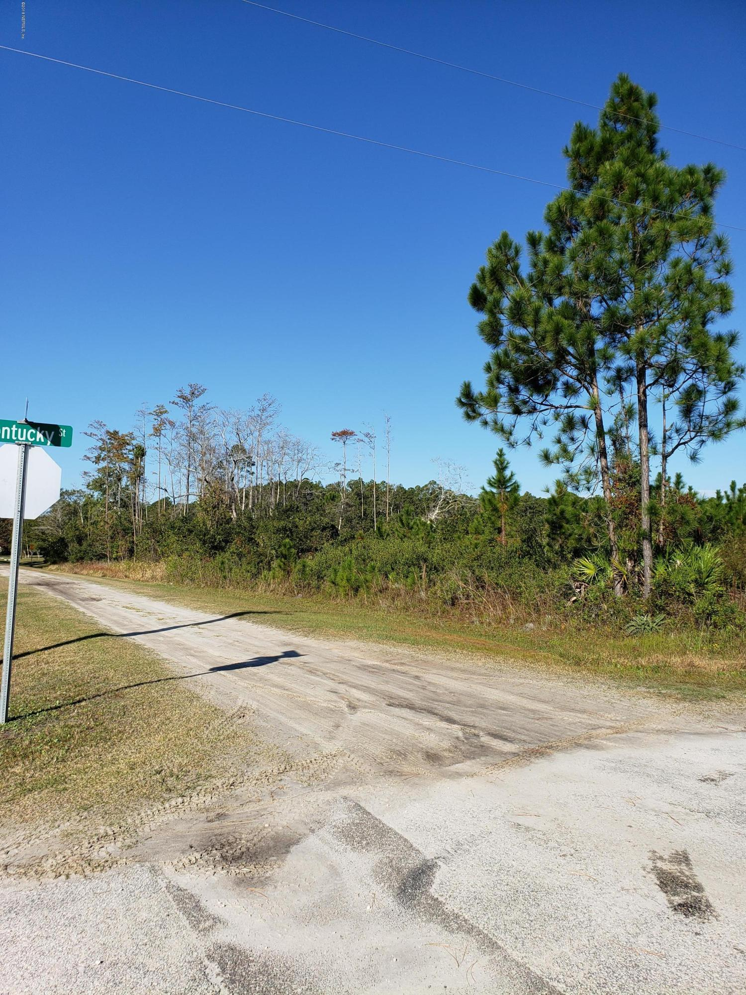 000 10TH, HILLIARD, FLORIDA 32046, ,Vacant land,For sale,10TH,968347