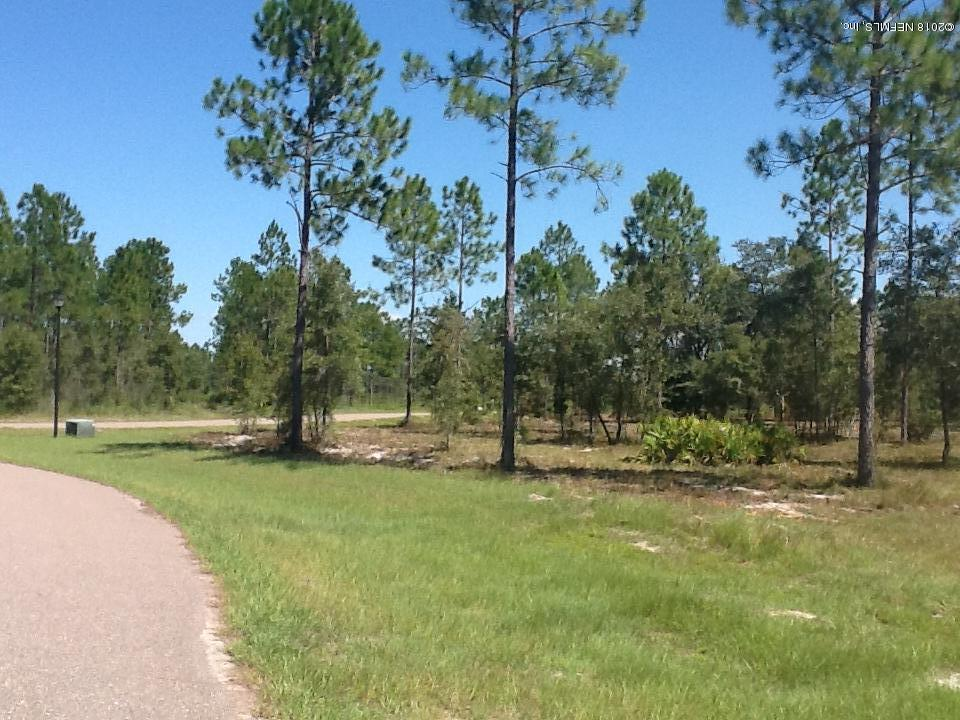 LOT 102 BULLOCK BLUFF, BRYCEVILLE, FLORIDA 32009, ,Vacant land,For sale,BULLOCK BLUFF,892902