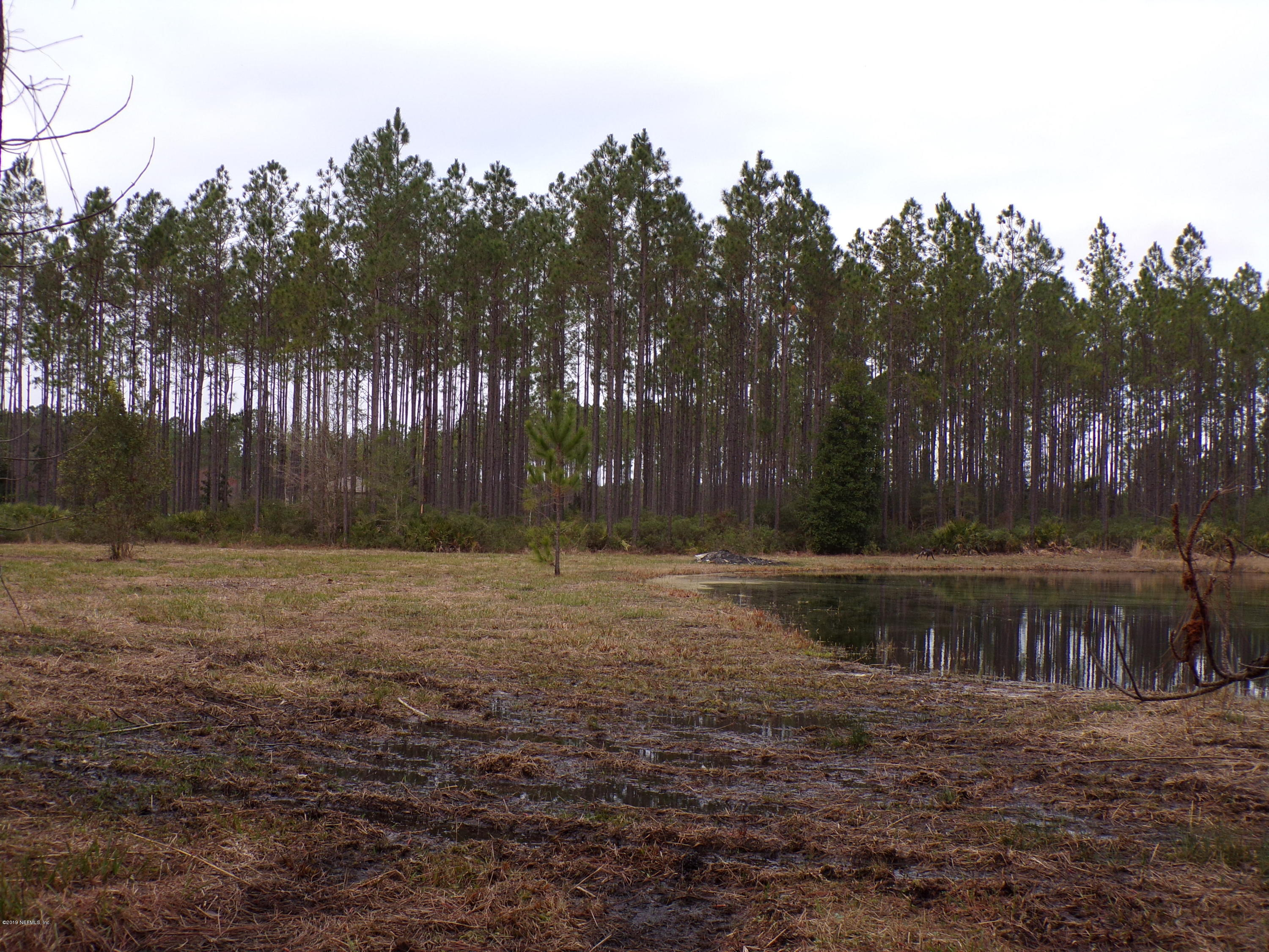34464 LOBLOLLY- CALLAHAN- FLORIDA 32011, ,Vacant land,For sale,LOBLOLLY,978938
