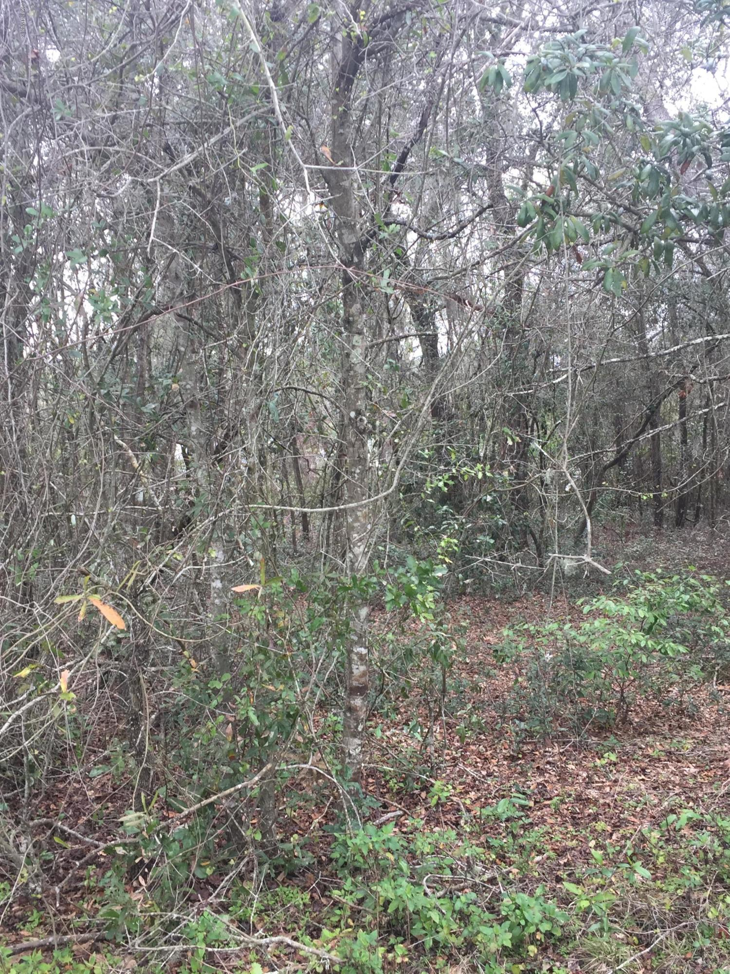 351 COUNTY RD 315, INTERLACHEN, FLORIDA 32148, ,Vacant land,For sale,COUNTY RD 315,943168