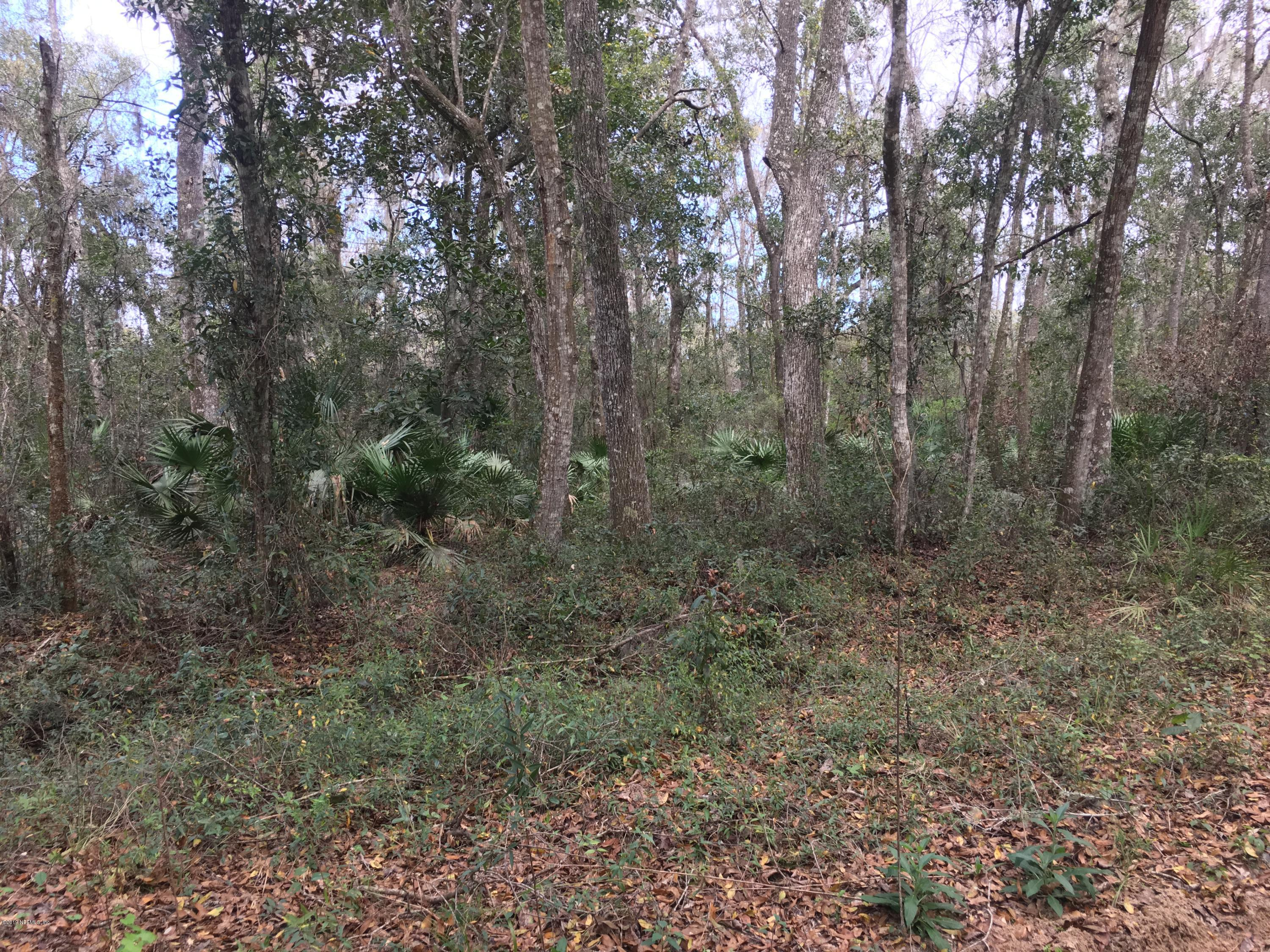 124 INDIAN MOUND, SATSUMA, FLORIDA 32189, ,Vacant land,For sale,INDIAN MOUND,916743