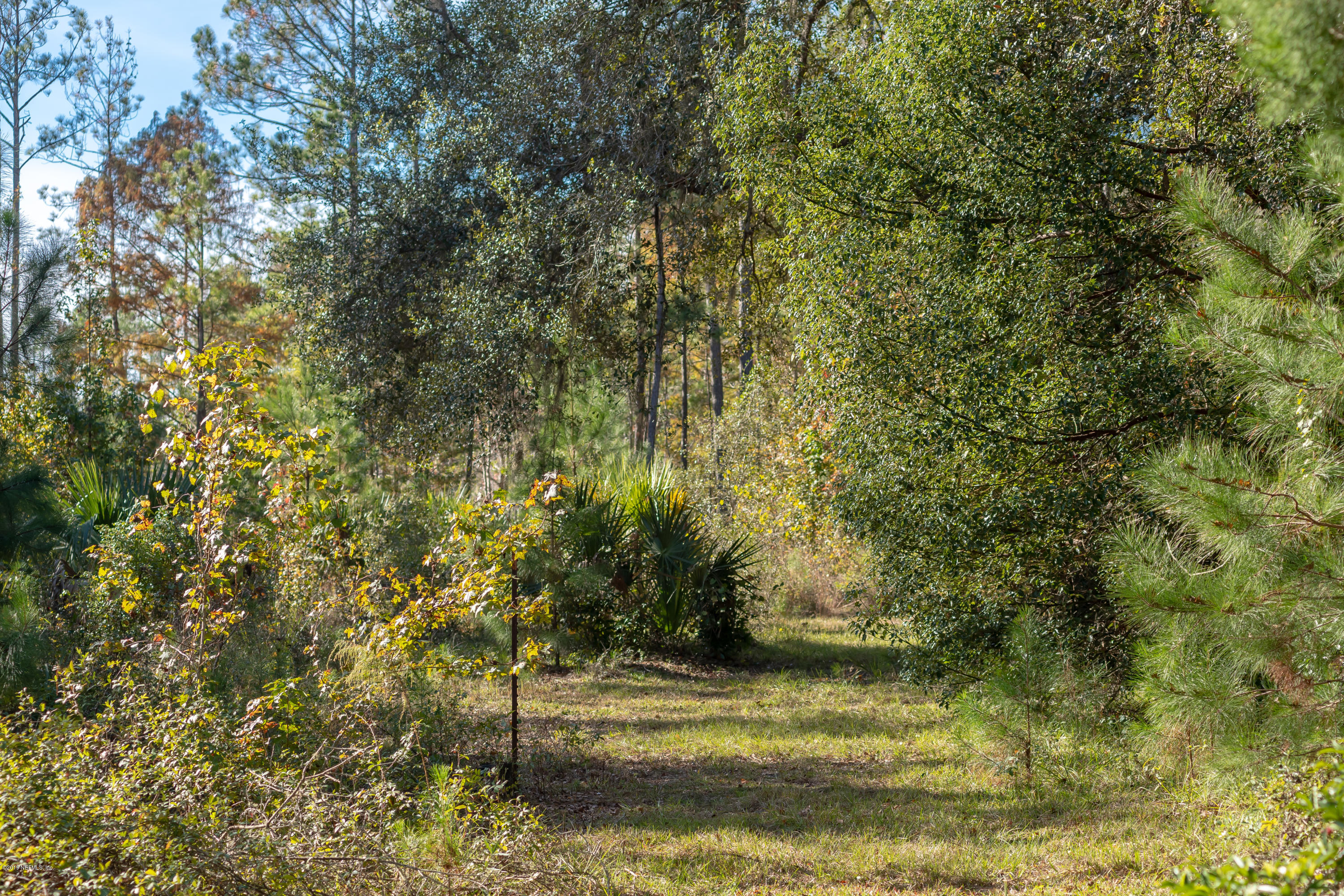 13970 52ND PLACE, SILVER SPRINGS, FLORIDA 34488, ,Vacant land,For sale,52ND PLACE,984515