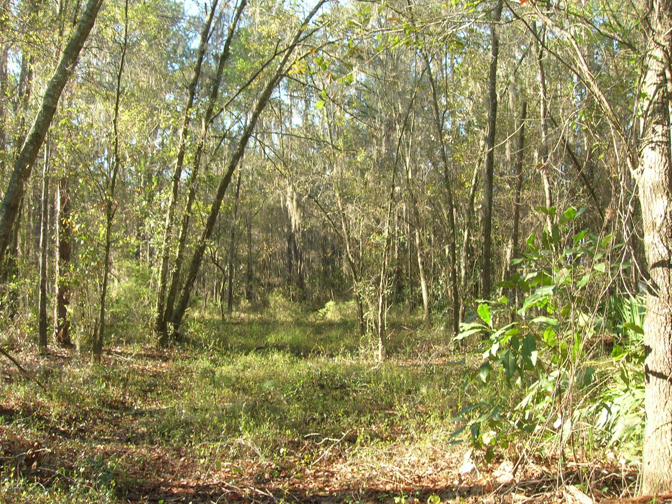 21619 115TH, EARLTON, FLORIDA 32631, ,Vacant land,For sale,115TH,985275