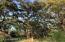 250 CANAL BLVD, PONTE VEDRA BEACH, FL 32082