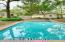 Oversized gorgeous pool
