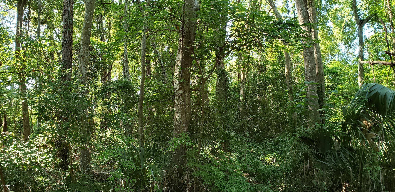 0 PATTERSON, JACKSONVILLE, FLORIDA 32219, ,Vacant land,For sale,PATTERSON,1000052