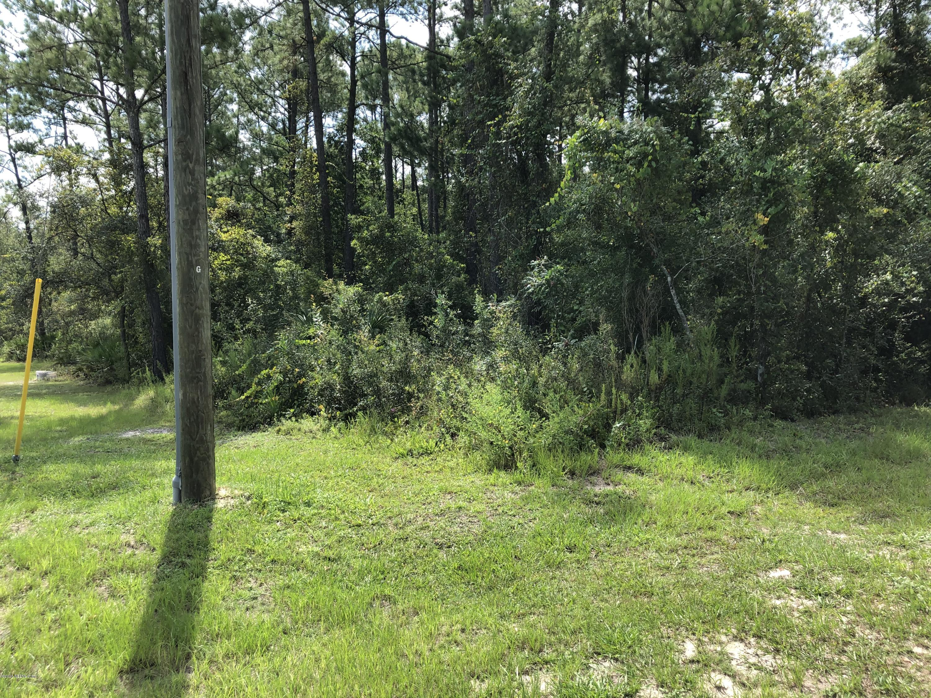 Details for 0 Fl-21, MIDDLEBURG, FL 32068