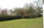 Rear yard with muscadine arbor in the distance.