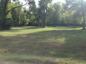 S Hwy 125, Lot 28, Monkey Island, OK 74331