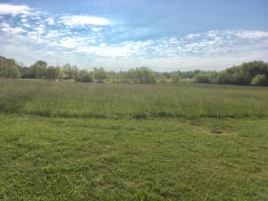 Commercial Lot Highway 59
