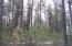 NORTH RAY ANDERSON RD, KETTLE FALLS, WA 99141