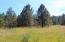 TBD WOLF TRACK WAY, LOT 3, FRUITLAND, WA 99129
