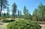 LOT 112 OLD KETTLE RD, KETTLE FALLS, WA 99141