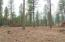 LOT #4 FUMI CIR, KETTLE FALLS, WA 99141