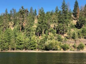 2296 EAGLE RIVER WAY, K, KETTLE FALLS, WA 99141