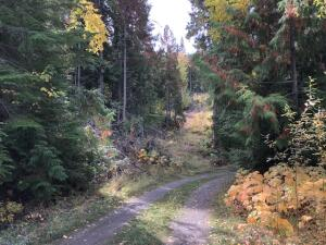 2518 E BODIE MT. RD., COLVILLE, WA 99114