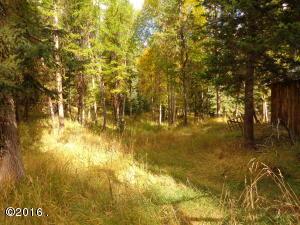 Marl Lake Creek Road, Eureka, MT 59917