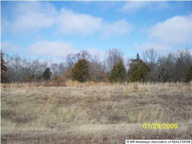 Tate, Mississippi 38618, ,Land,For Sale,247439