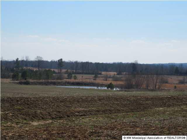 1 Spiller Road, Marshall, Mississippi 38659, ,Land,For Sale,Spiller,289345