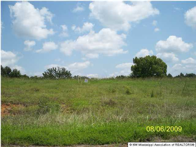 35 Byhalia Creek Farms Road, DeSoto, Mississippi 38611, ,Land,For Sale,Byhalia Creek Farms,260455