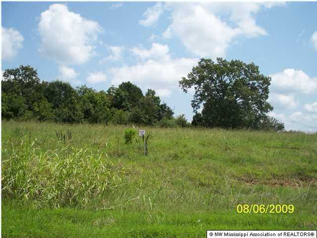36 Byhalia Creek Farms Road, DeSoto, Mississippi 38611, ,Land,For Sale,Byhalia Creek Farms,260456