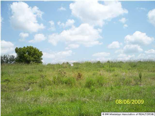 43 Byhalia Creek Farms Road, DeSoto, Mississippi 38611, ,Land,For Sale,Byhalia Creek Farms,260462