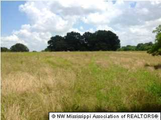 123 Brownsferry Road, Tate, Mississippi 38668, ,Land,For Sale,Brownsferry,290874