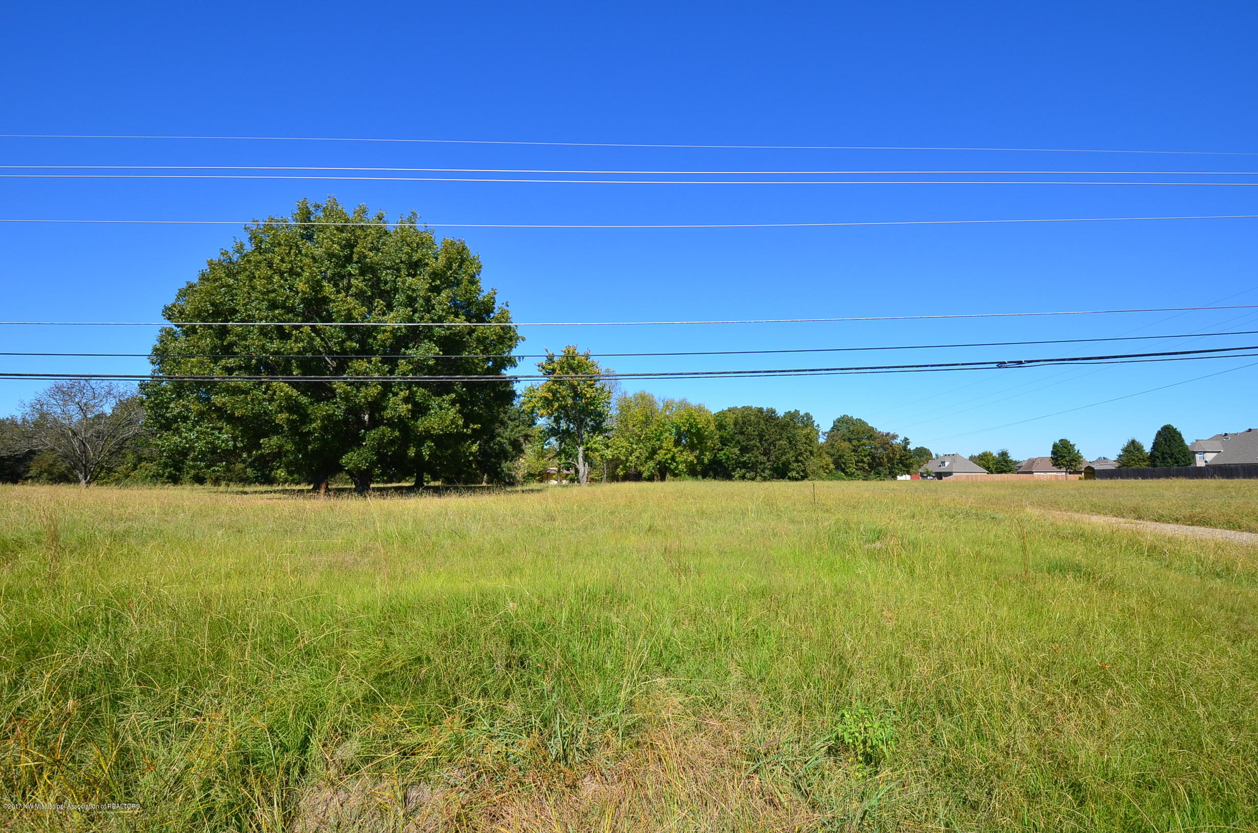 1260 HOLLY SPRINGS ROAD, DeSoto, Mississippi 38632, ,Land,For Sale,HOLLY SPRINGS ROAD,312969