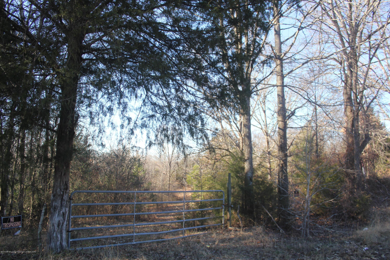 0 Blue Goose Road, Tate, Mississippi 38665, ,Land,For Sale,Blue Goose,314126