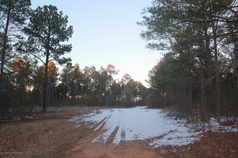 580 Homer Crawford Road, Tate, Mississippi 38638, ,Land,For Sale,Homer Crawford,314304