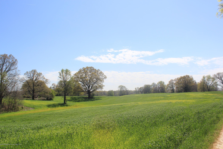 1 Delta View Road, DeSoto, Mississippi 38680, ,Land,For Sale,Delta View,315740