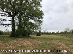 Tract 1 Holly Springs Road, Hernando, MS 38632