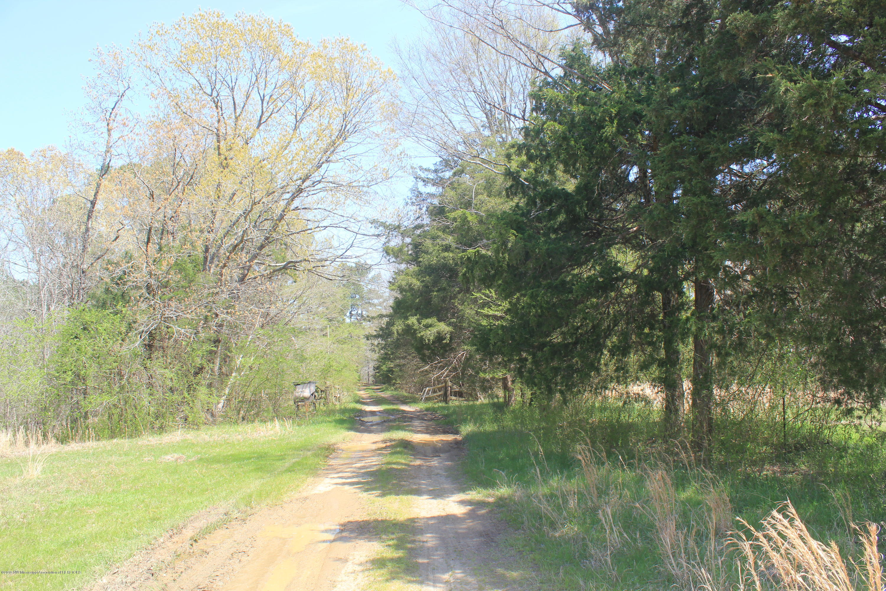 6860 Highway 309, Marshall, Mississippi 38611, ,Land,For Sale,Highway 309,322031