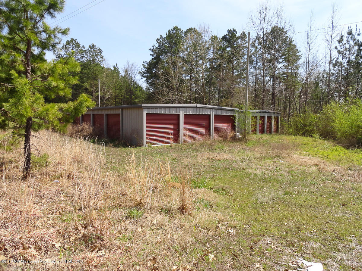 0 George Mann Rd, Marshall, Mississippi 38659, ,Commercial,For Sale,George Mann Rd,322061