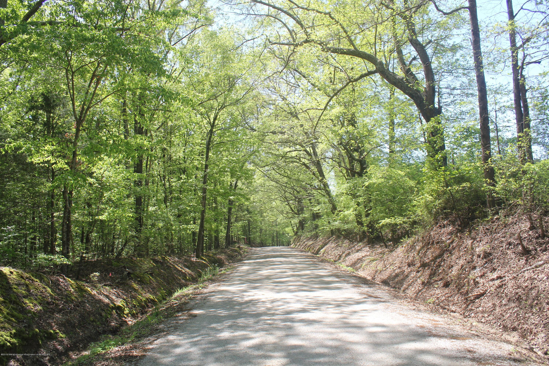 2 Hogan Road, Marshall, Mississippi 38635, ,Land,For Sale,Hogan,322388