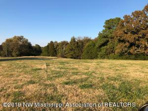 32 acres Hwy 305, Hernando, MS 38632