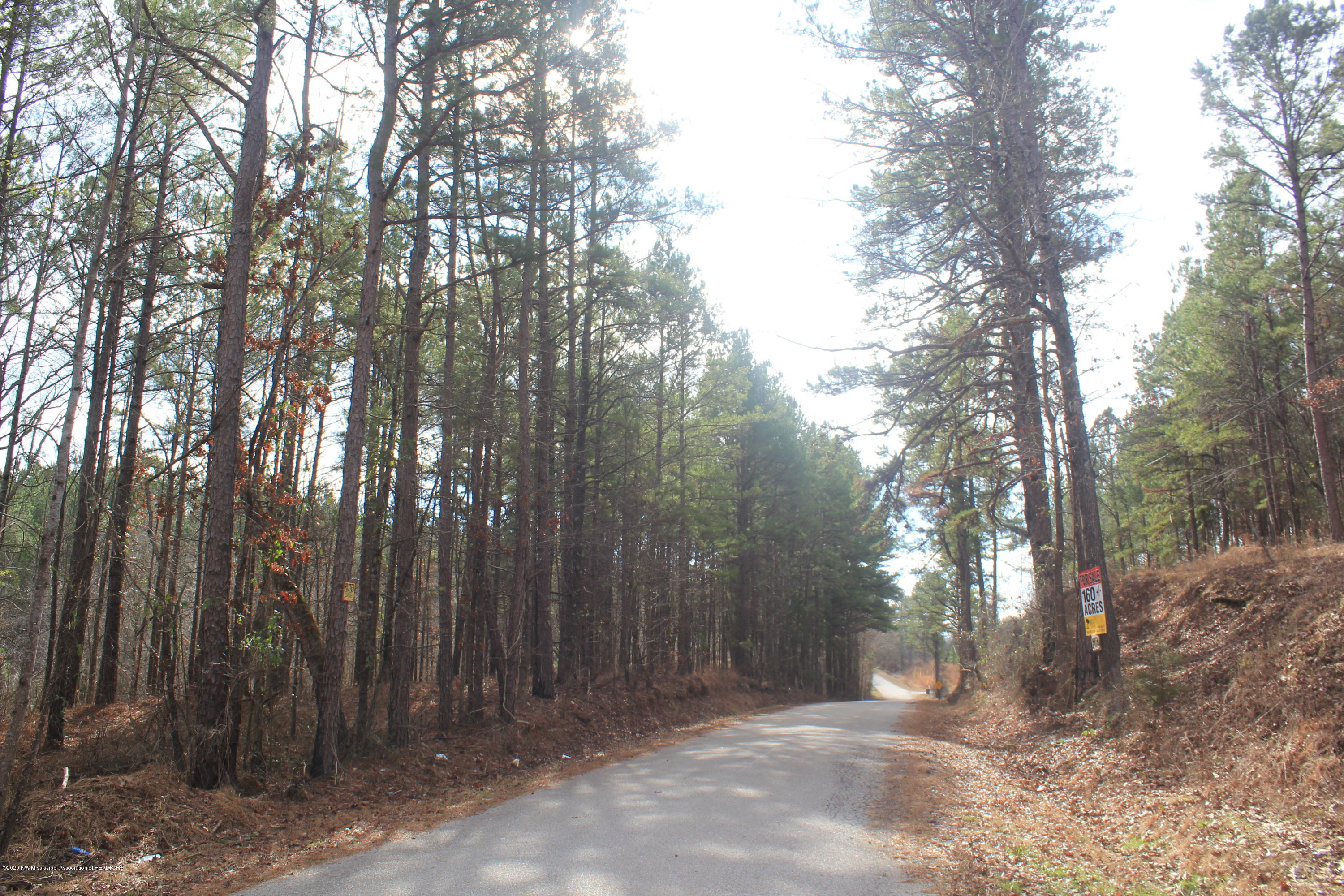 0 Co Rd 462, Lafayette, Mississippi 38655, ,Land,For Sale,Co Rd 462,327117