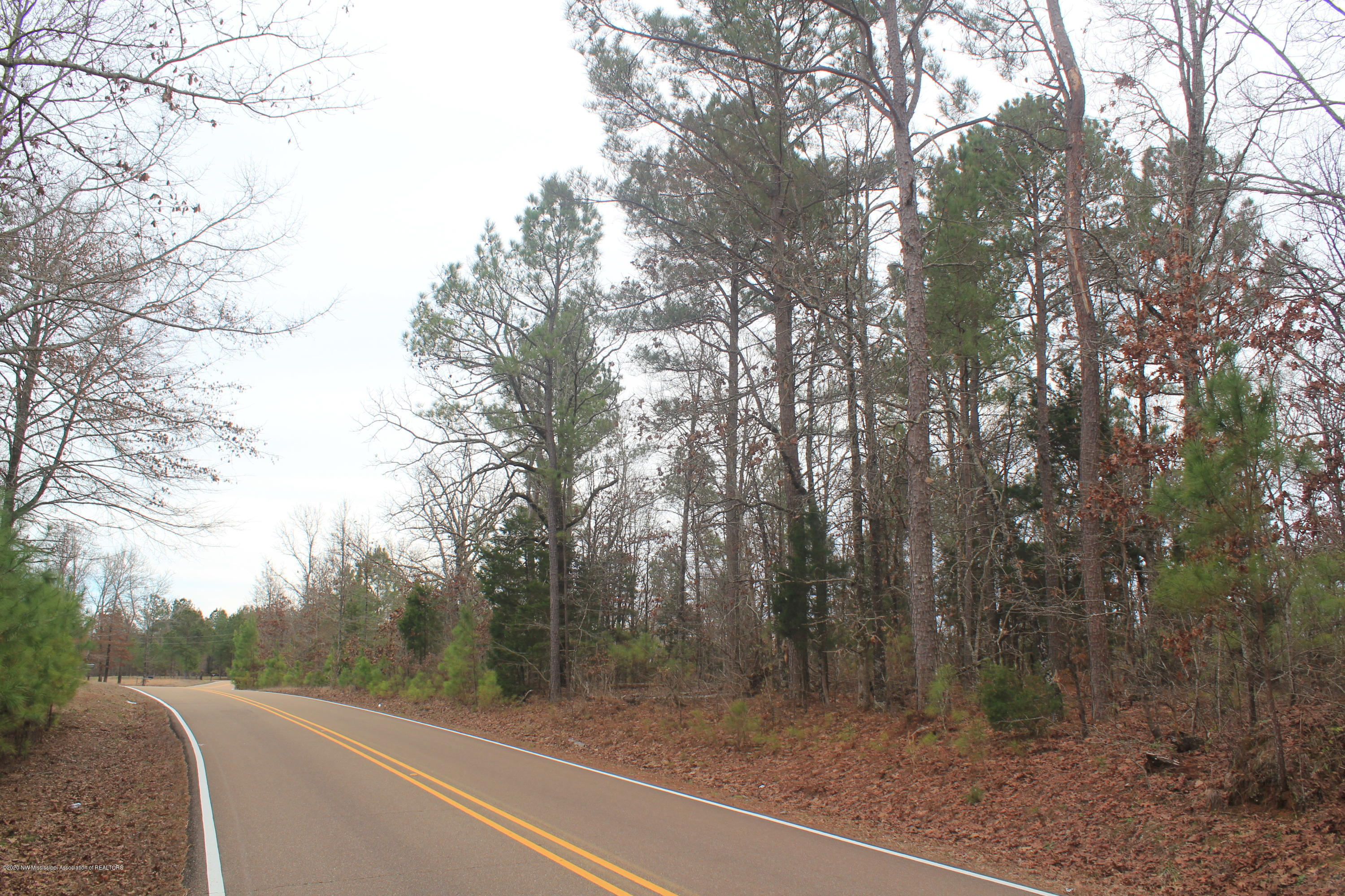 6 Co Rd 204, Lafayette, Mississippi 38601, ,Land,For Sale,Co Rd 204,327386