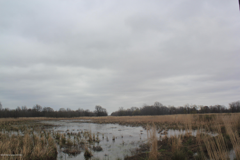 200 Atkinson Road, Panola, Mississippi 38606, ,Land,For Sale,Atkinson,328172