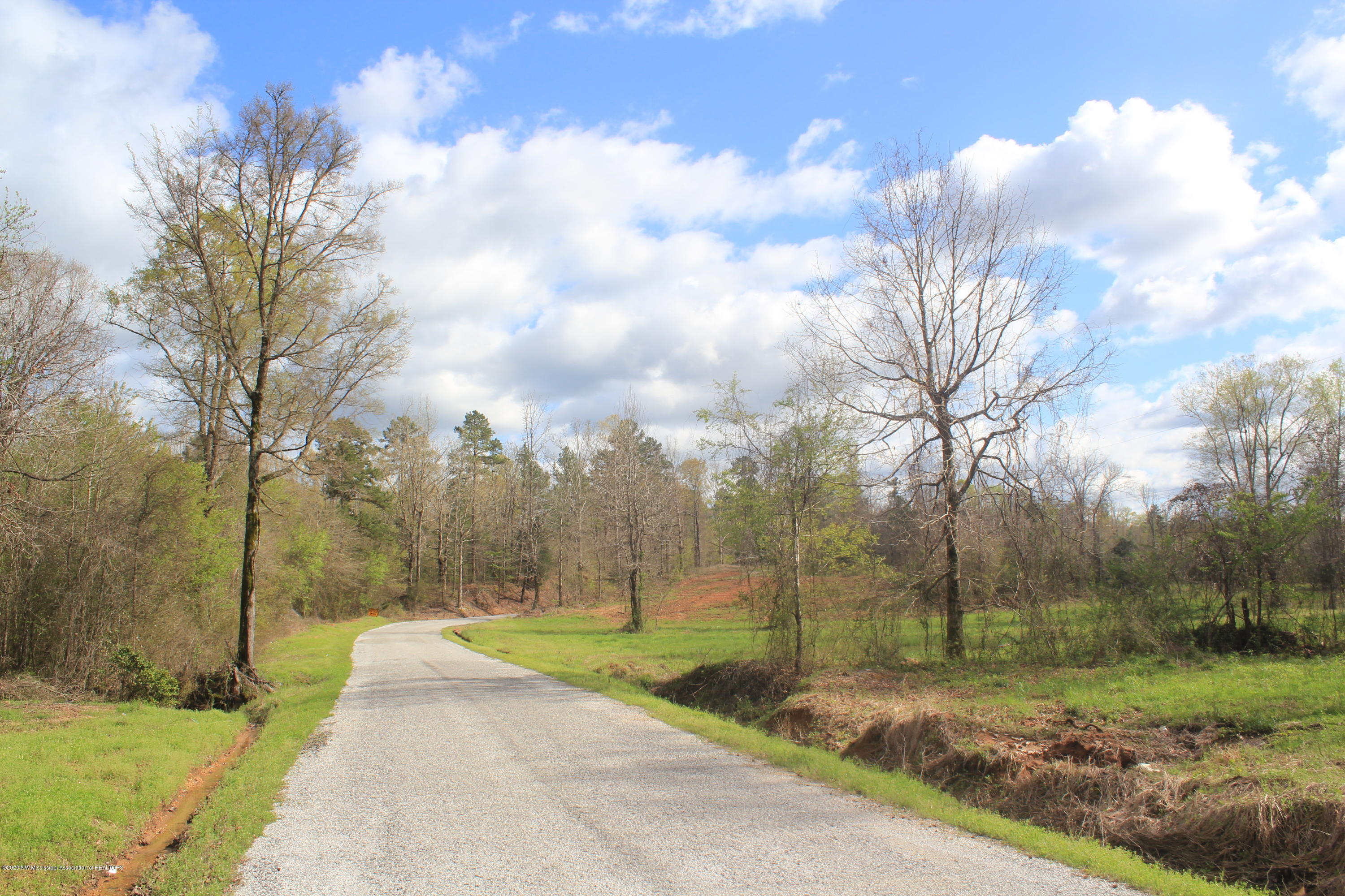2700 Musgray Road, Marshall, Mississippi 38685, ,Land,For Sale,Musgray,328574