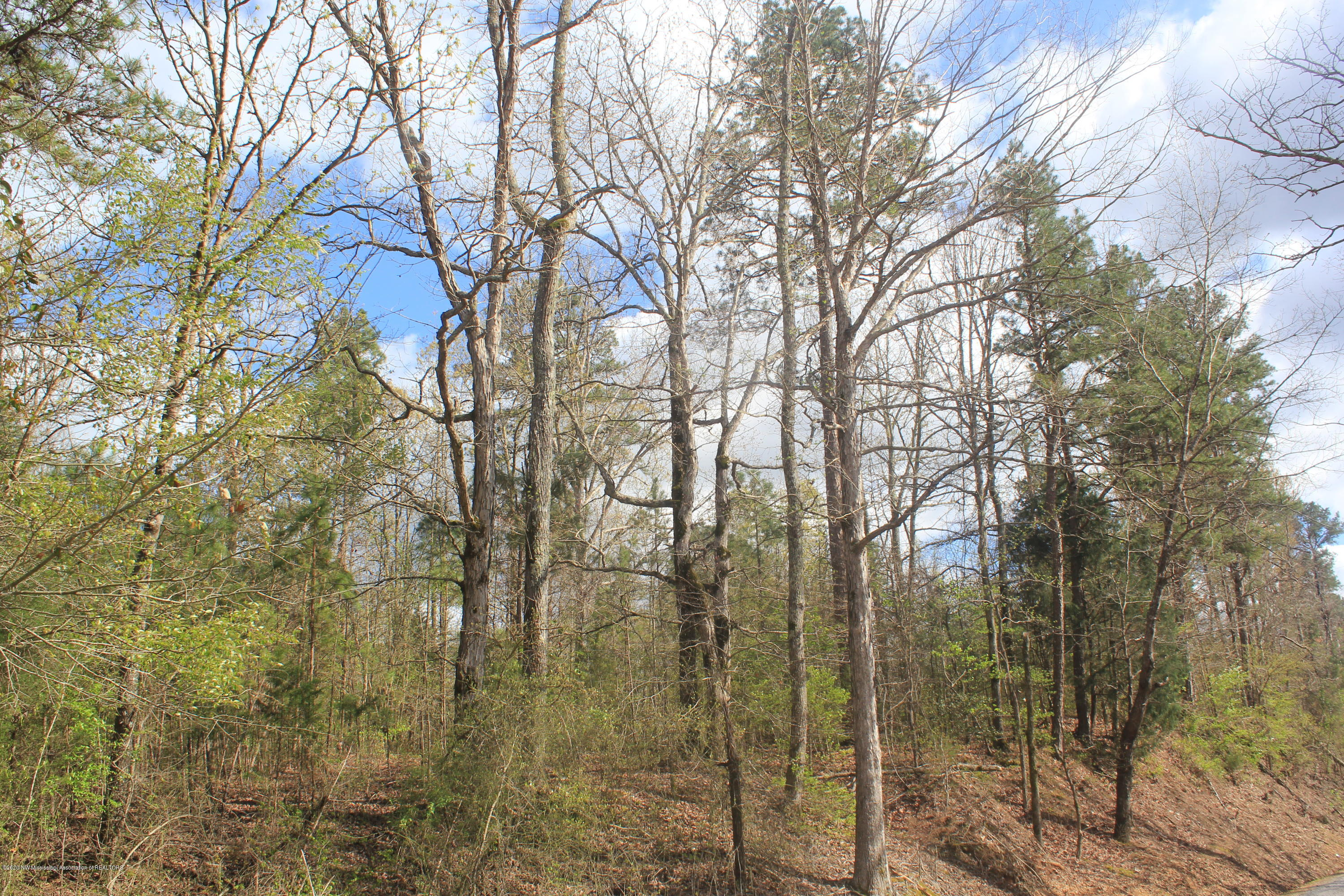 2701 Musgray Road, Marshall, Mississippi 38685, ,Land,For Sale,Musgray,328575