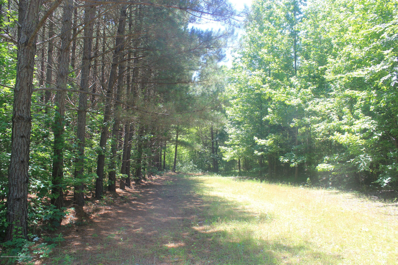 395 Red Banks Road, Marshall, Mississippi 38661, ,Land,For Sale,Red Banks,330930