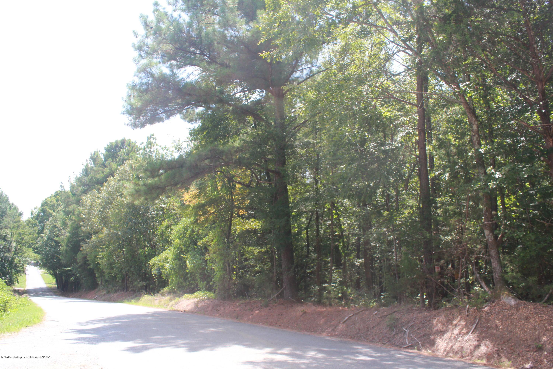 1 Valentine Road, Marshall, Mississippi 38635, ,Land,For Sale,Valentine,331016