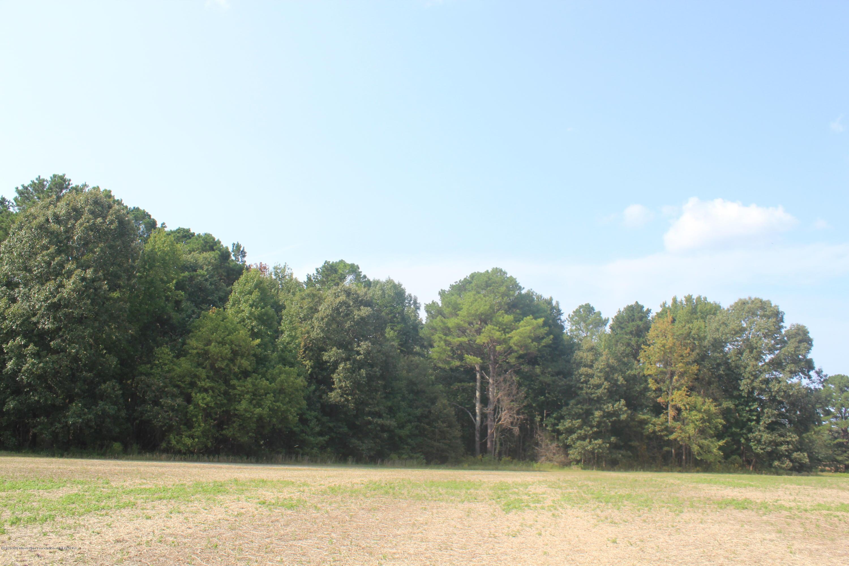 7199 MS 72, Benton, Mississippi 38647, ,Land,For Sale,MS 72,331521