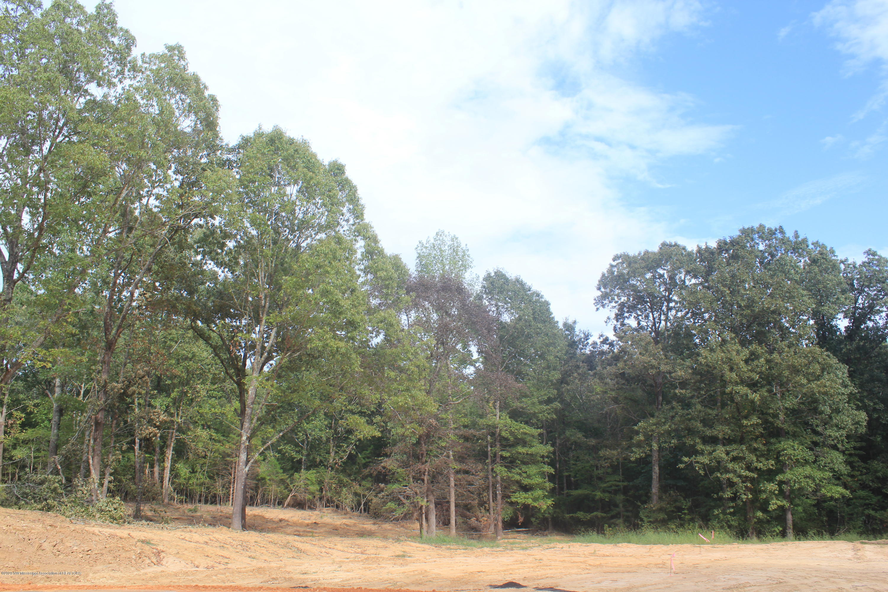 36 Hayward Drive, Marshall, Mississippi 38611, ,Land,For Sale,Hayward,331645