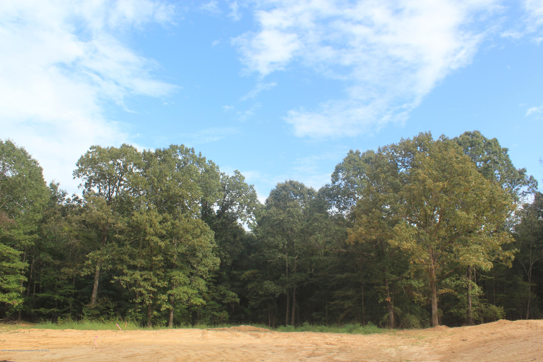 37 Hayward Drive, Marshall, Mississippi 38611, ,Land,For Sale,Hayward,331646