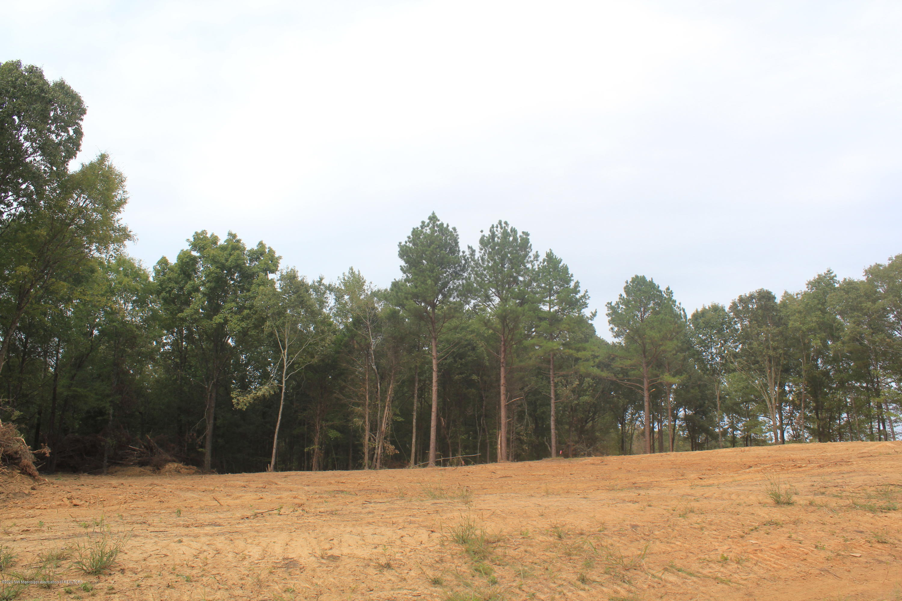 40 Hayward Drive, Marshall, Mississippi 38611, ,Land,For Sale,Hayward,331649