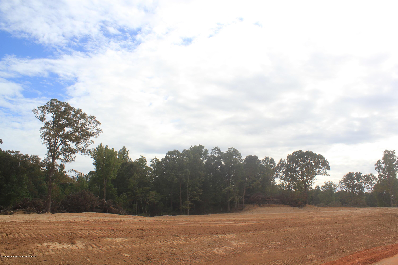 41 Hayward Drive, Marshall, Mississippi 38611, ,Land,For Sale,Hayward,331650