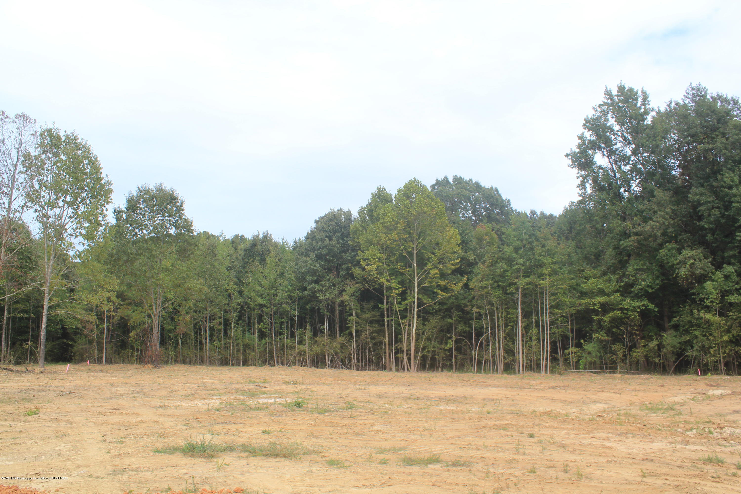 42 Hayward Drive, Marshall, Mississippi 38611, ,Land,For Sale,Hayward,331651